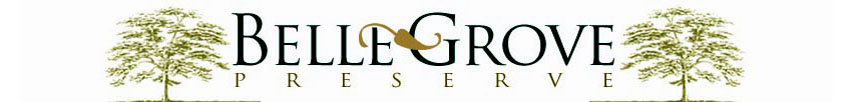 Bellegrove Preserve Homes for Sale